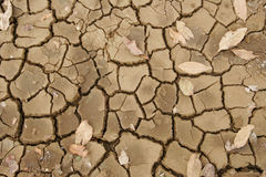 Cracked dry mud detail Royalty Free Stock Photos