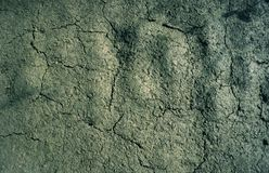 Cracked dry mud earth background texture royalty free stock images