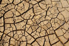 Cracked dry mud Stock Images