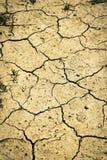 Cracked dry sandy soil Royalty Free Stock Photo