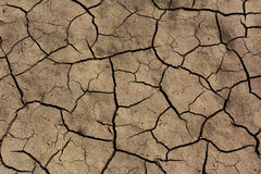 Cracked Dry Soil Stock Images