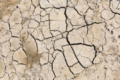 Cracked and dry soil Royalty Free Stock Photos