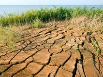 Cracked earth. Royalty Free Stock Image
