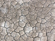 Cracked earth. Cracked dry earth stock image