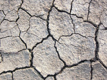 Cracked earth. Cracked dry earth Stock Photography