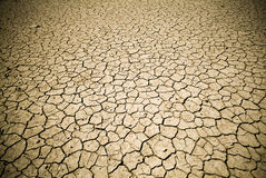 Cracked Earth. Badly cracked earth under a scorching sun stock photo