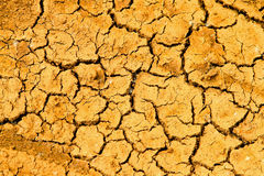 Cracked earth Stock Images