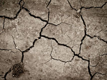 Cracked earth. Dry and cracked earth or mud stock photos