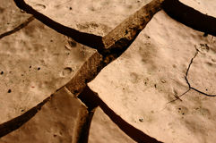Cracked earth Stock Photo