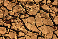 Cracked earth. Dry land Backgrounds Royalty Free Stock Image