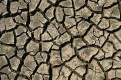 Cracked earth. Dry cracked earth texture background Stock Photography
