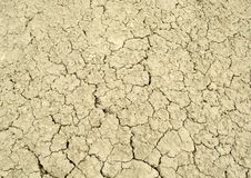 Cracked earth. Cracked from the heat and lack of moisture the land Royalty Free Stock Image