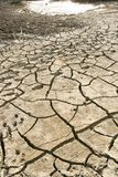 Cracked earth. Cracked from the heat of the earth with puddle Stock Images