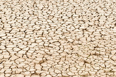 Cracked earth. An area of cracked earth because of extreme dryness Stock Photos