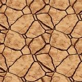 Cracked earth Stock Photos