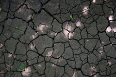 Cracked earth texture. Cracked earth, irregular shapes, soil, texture royalty free stock photo