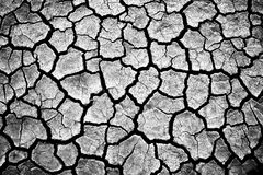 The cracked earth Stock Photography