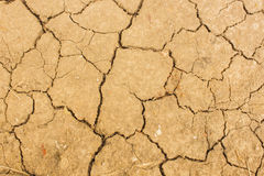 Cracked earth. Abstract natural texture cracked earth. Good natural background, clay desert texture Stock Photos