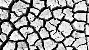 Cracked earth in the arid area Royalty Free Stock Photos