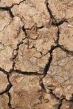Cracked earth arid Royalty Free Stock Photo