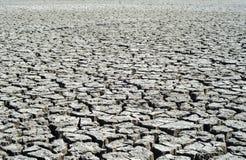 Cracked earth as desert Stock Photos