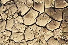 Cracked earth background Stock Images