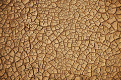 Cracked earth background Stock Photos