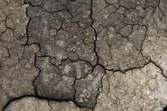 Cracked earth background, clay desert texture Royalty Free Stock Image