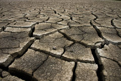Cracked earth background, clay desert texture Royalty Free Stock Photos