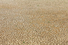 Cracked earth background Royalty Free Stock Photography