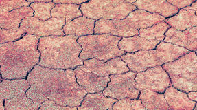 Cracked earth background Royalty Free Stock Images