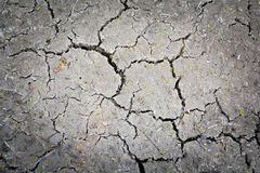 Cracked earth background Stock Photography