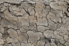 Cracked earth background Royalty Free Stock Image