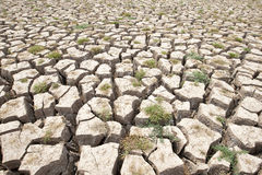 Cracked earth and barren Stock Photos