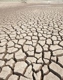 Cracked earth and barren Stock Images
