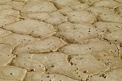 Cracked earth close-up. Close-up of earth cracked because of drought Royalty Free Stock Images