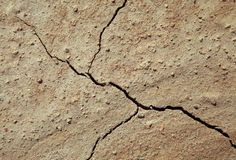 Cracked earth close-up Royalty Free Stock Images