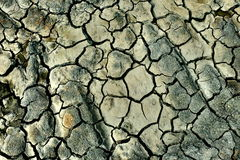 Cracked earth. Colored dried cracked dirt field Stock Photo