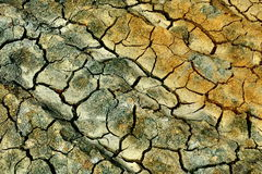 Cracked earth. Colored dried cracked dirt field Royalty Free Stock Images