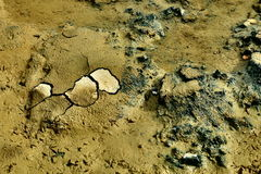 Cracked earth. Colored dried cracked dirt field Royalty Free Stock Photo