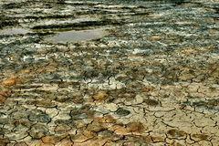 Cracked earth. Colored dried cracked dirt field Stock Image
