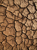 Cracked earth after drought Stock Image