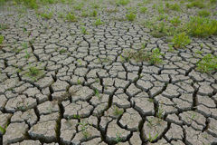 Cracked earth from drought Stock Photos