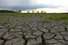 Cracked earth from drought Royalty Free Stock Photography