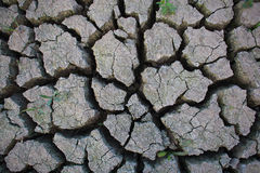 Cracked earth from drought Stock Photography