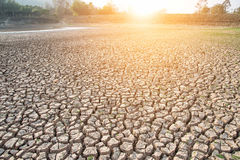 Cracked earth,Drought,Dry land,Dry tree,Dry Dam. Stock Image