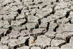 Cracked earth after drought. Royalty Free Stock Image