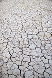 Cracked earth in dry desert Royalty Free Stock Photography