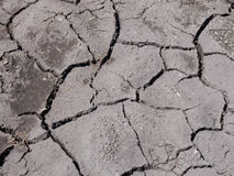 Cracked earth in dry farmland Stock Photography