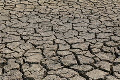 Cracked earth and dry soil texture. Cracked earth and dry soil texture for the design nature background stock photography